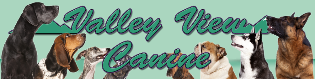 Dog Obedience Training Prices | Valley View Canine LLC